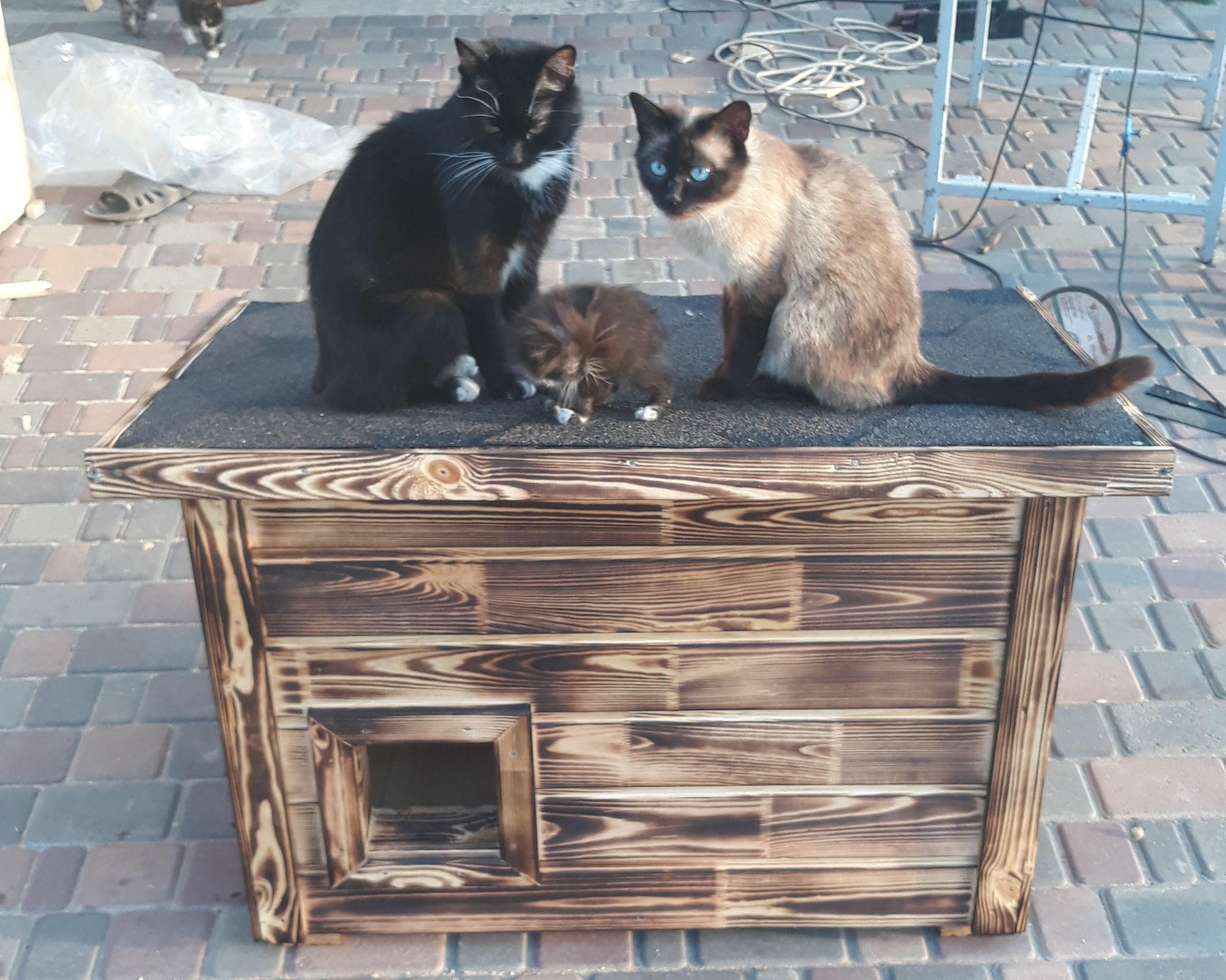 Будки, домики для кошек